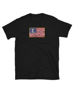 Litecoin t-shit with Litecoin logo on the American flag